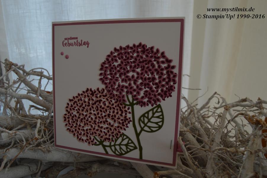 MyStilmix-Geburtstagskarte mit Lesezeichen-Wald der Worte-Stampin up1