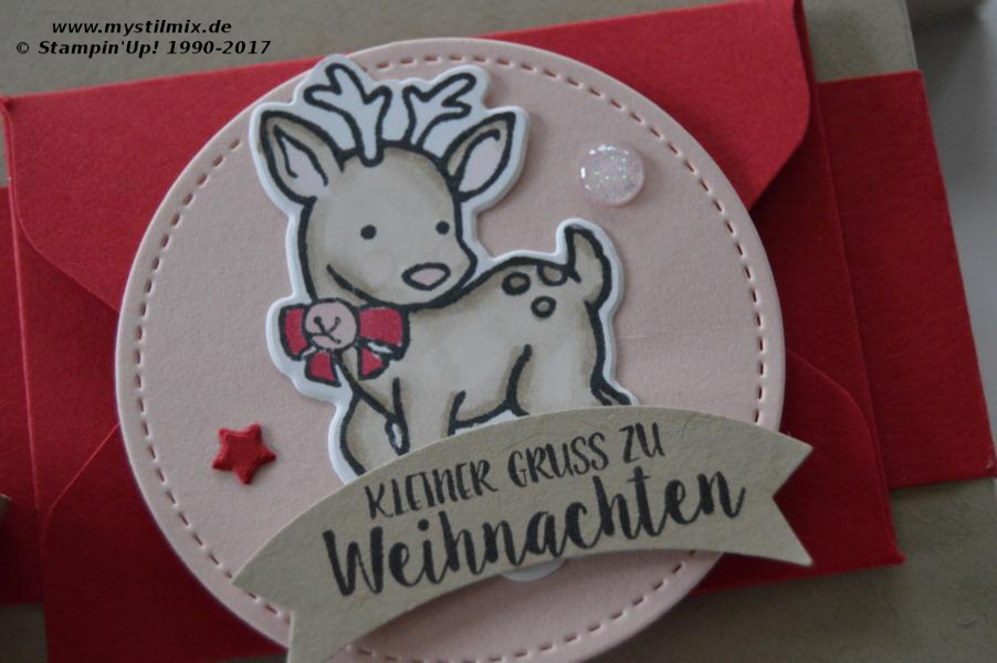 Stampin up - Verpackung mit Umschlag - Stempel Seasonal Chums - Stampin' Blends - MyStilmix3